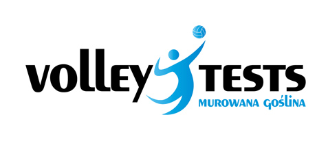 logo volley tests