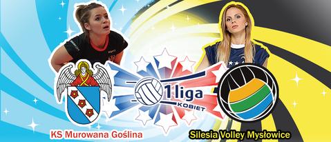 Przedstawienie rywala: Silesia Volley