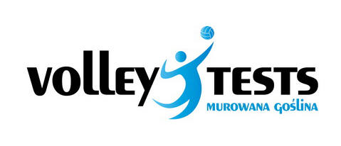 logo volley tests - nowe do artykułu